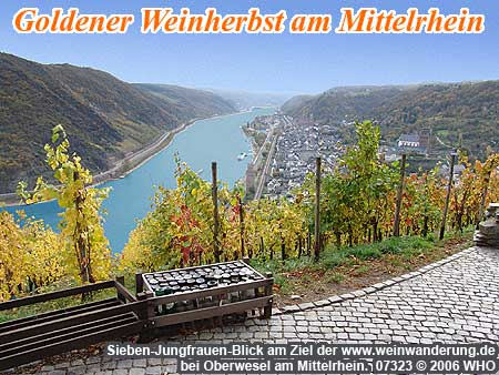 mittelrhein weinwanderung 2016 2017 oberwesel boppard linz weinwochenende weinbergswanderung. Black Bedroom Furniture Sets. Home Design Ideas